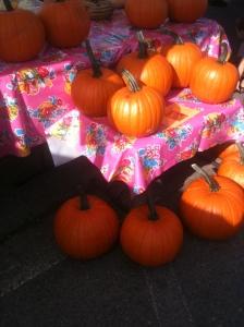 pumpkin! pumpkin! pumpkin!